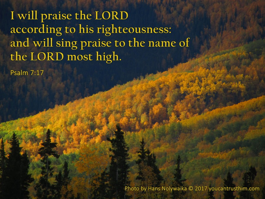 Give Thanks Unto theLORD
