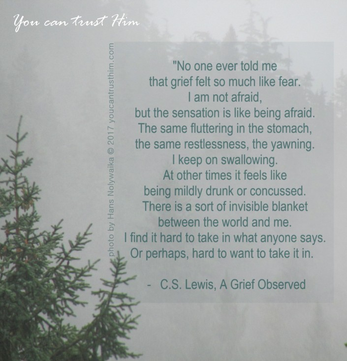 C.S. Lewis, A Grief Observed