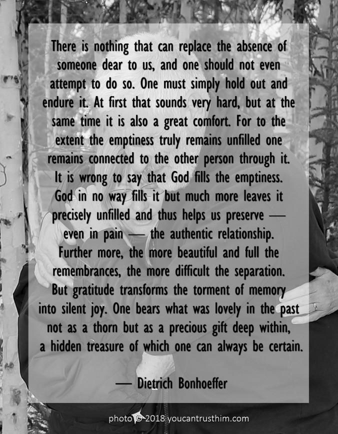 Hidden Treasure - Dietrich Bonhoeffer