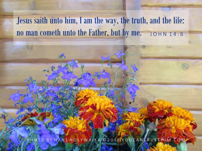 John 14:6 I am the way, the truth, and the life;