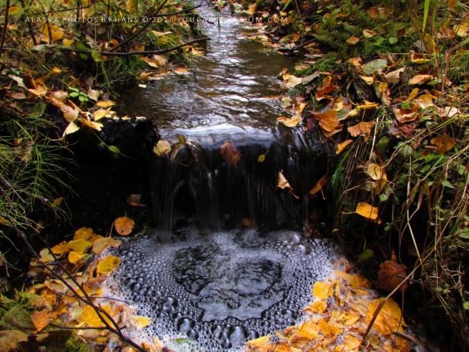 Little Goldstream Creek, Alaska