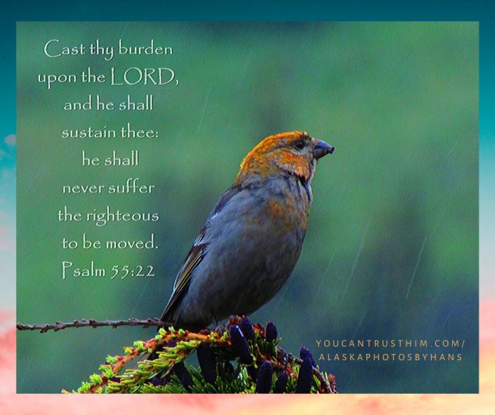 Psalm 55_22