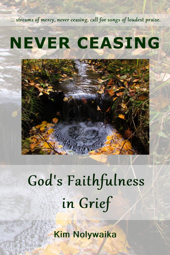 Never Ceasing book cover